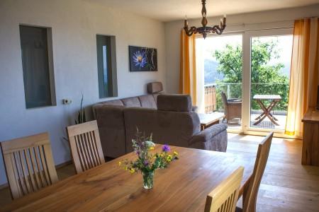 Wohn - & Essbereich mit Blick auf die Terrasse2